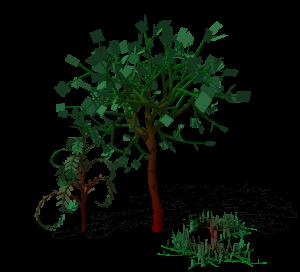 proto_3plant